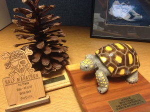 You could win a Pirate, a Pine Cone or a Tortoise!